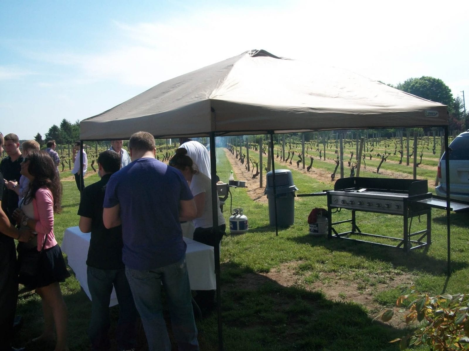 New York Vineyard Tours
