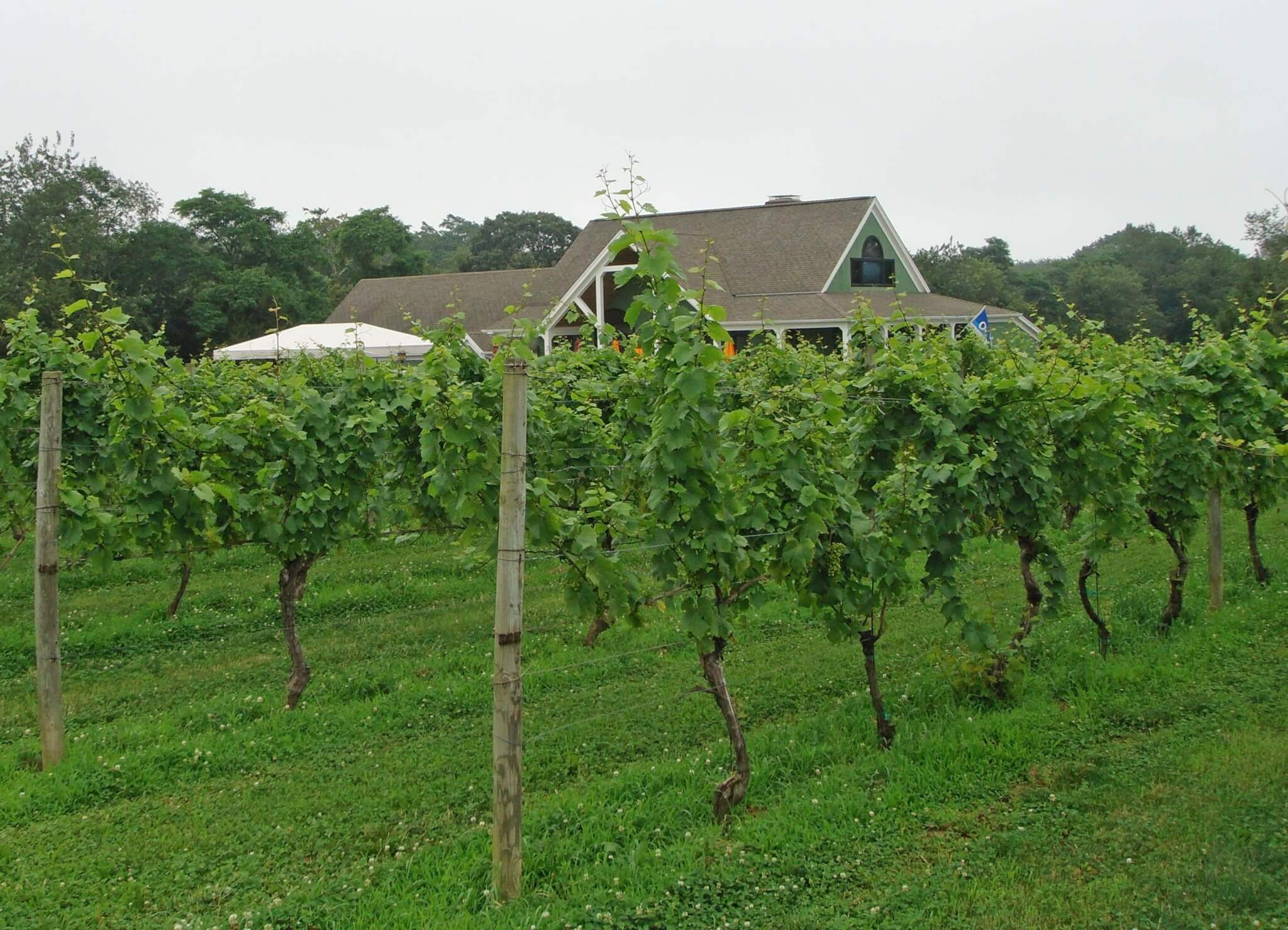 long island Wine Trail