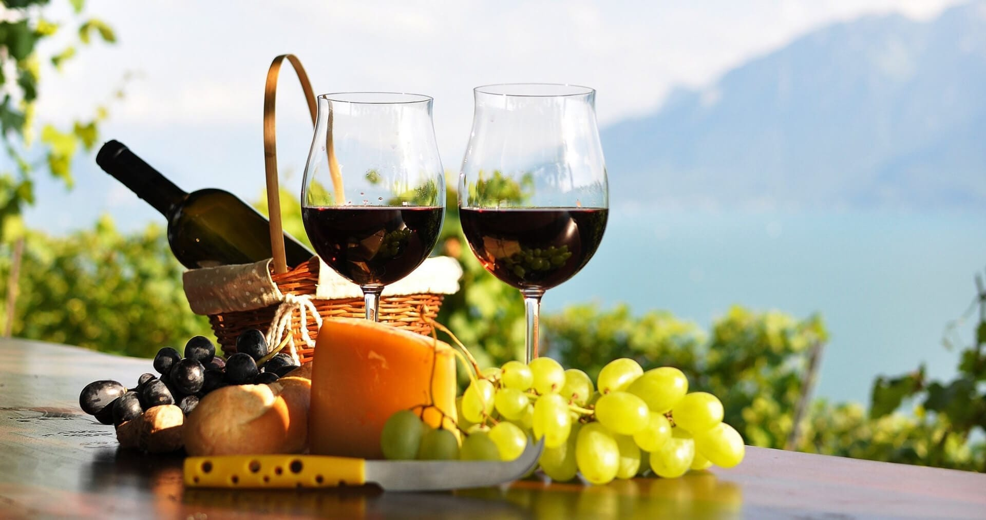 North Fork Winery Tours