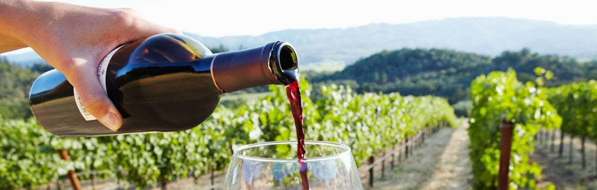 Articles written about LI Vineyard Tours