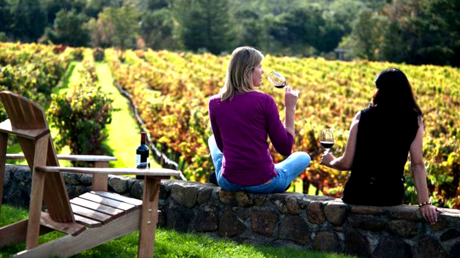 LI Wine Tours - LI Vineyard Tours