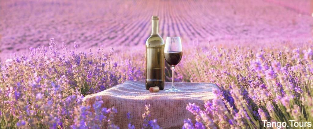 Long Island Wine Tours - LI Vineyard Tours