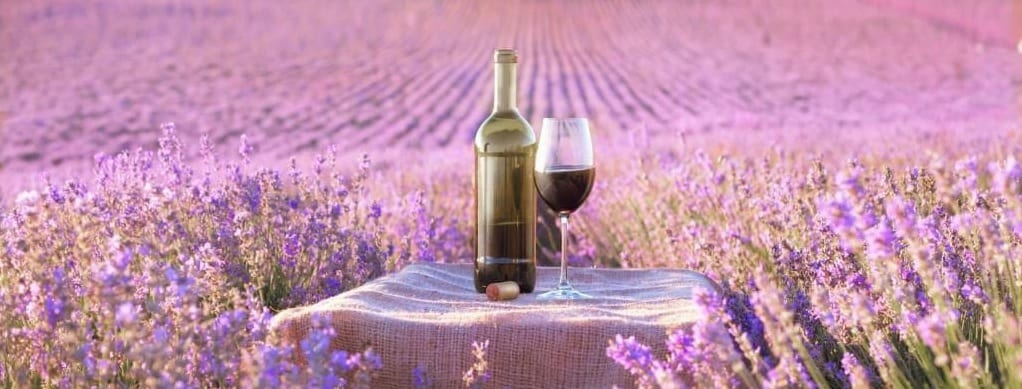 Long Island Wine Tours LI Vineyard Tours