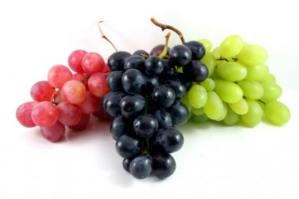 Long Island Grapes - LI Vineyard Tours